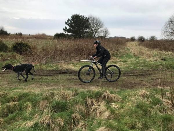 Bikejor Workshop Fife