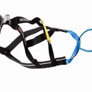 Non-Stop Nansen Nome harness