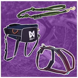 Cani-Hiking Starter Kit