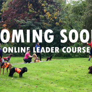 Online Leader Training Course (Register Interest)