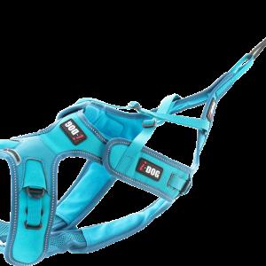 I-Dog Phoenix Harness