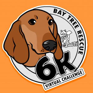 Cani-Fit Virtual Challenges – Bay Tree Rescue